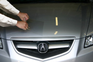 applying Xpel paint protection film